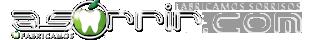 logo_as_310x40